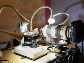 这些超微距照片超过25000张照片组成